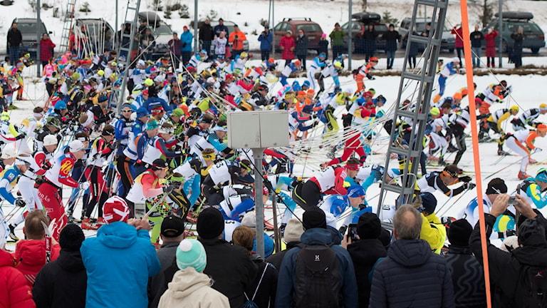 Starten av Vasaloppet 2015.