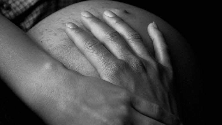 Gravid mage