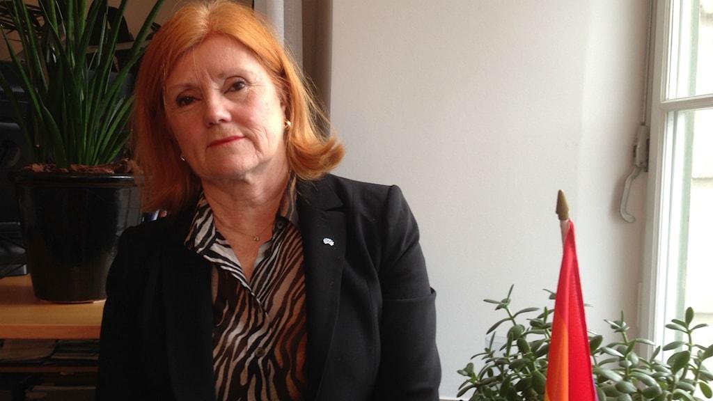 Ann Catrine Fogelgren, liberalerna