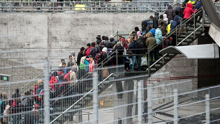 Flyktingar på väg i Malmö.