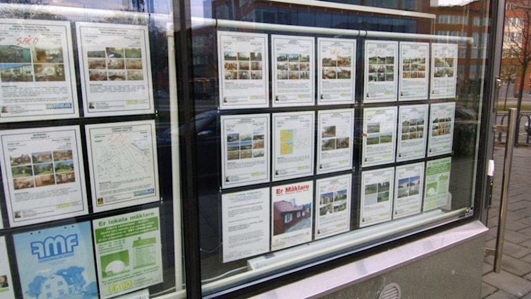 Bostadsannonser i skyltfönster