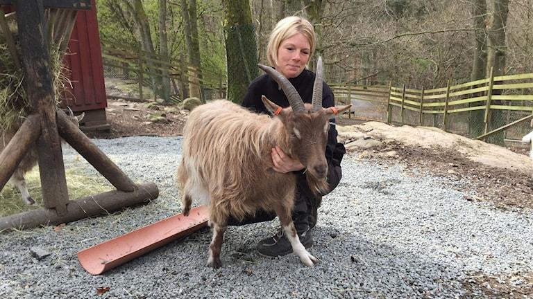 Anna Schönström, djuransvarig i Slottsskogen