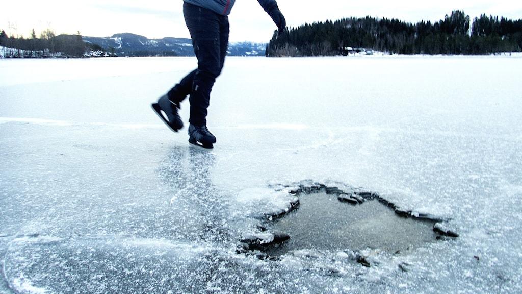 Skridskoåkare farligt nära en liten vak i isen