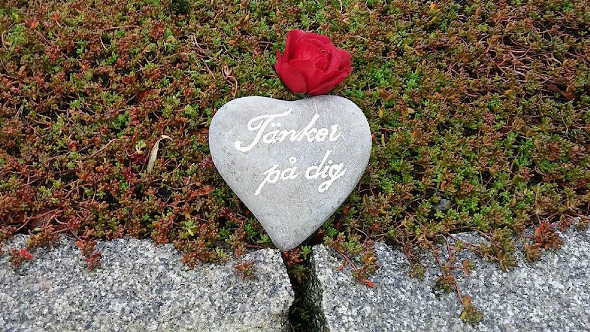 """ett stenformat hjärta som det står """"Tänker på dig"""" på. En röd ros ligger bredvid."""