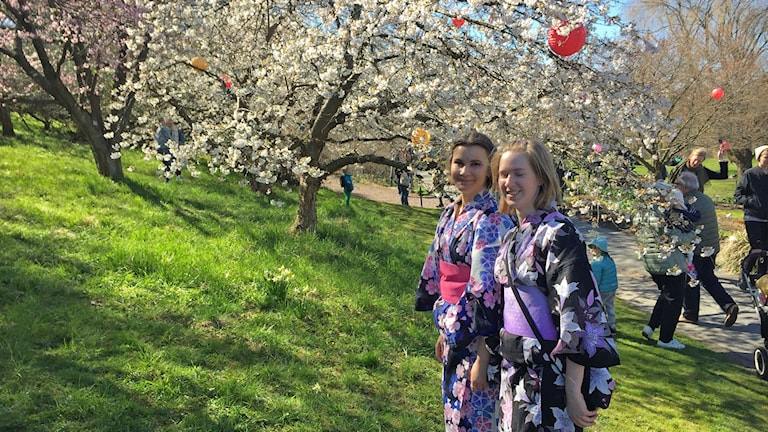 Alexandra Iantchenko och Malin Axelsson firar Hanami.