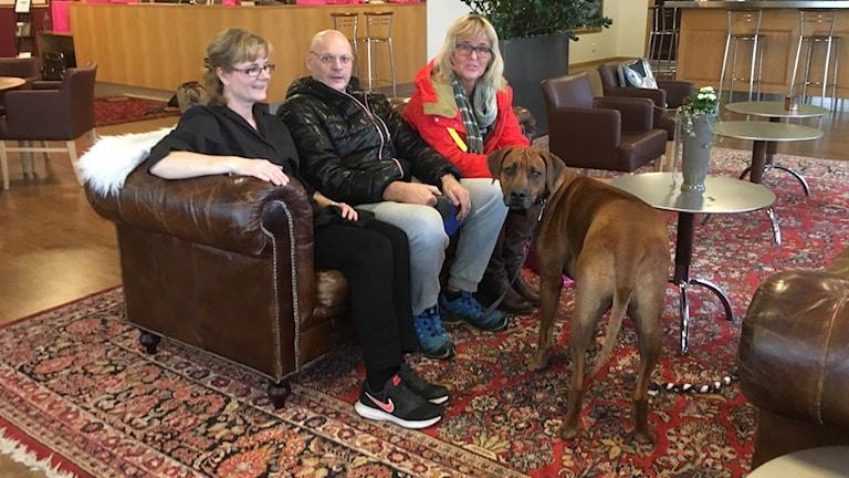 Tre människor och en hund