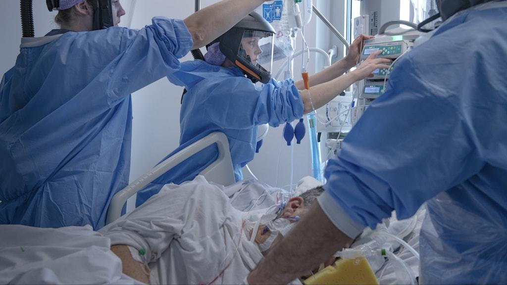 intensivvård coronavirus