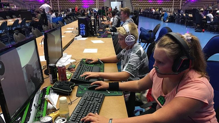 Emma och William Kringberg är några av ungdomarna som deltar under helgens LAN. Här framför varsin dator.