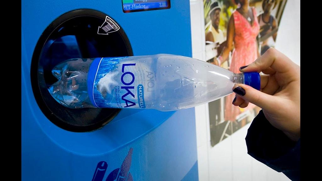 En pet-flaska pantas i en pantautomat Foto: Claudio Bresciani/Scanpix.