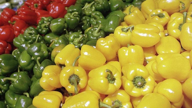 mängder av paprikor i olika färger