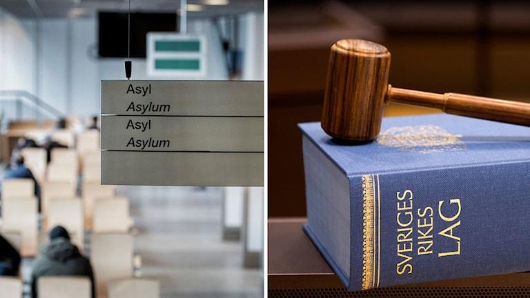Bland annat den nya migrationslagen som klubbades i slutet av juni kommer ge domstolarna mer jobb.