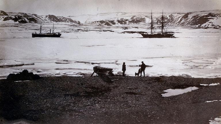 Två fartyg i det isiga vattnet. Två oidentifierade personer och en hund på stranden.