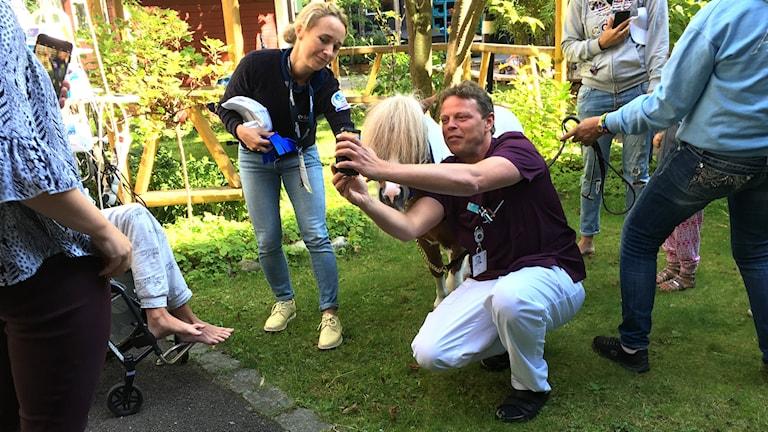 Man som tar selfie på sig själv och en ponny