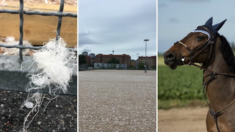 Sand uppblandad med fibrer på Heden