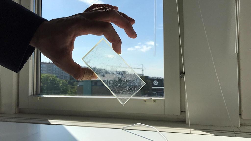 En person håller upp en liten glasruta med plastfilm på