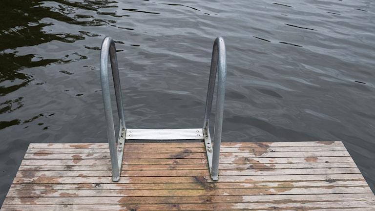 Träbrygga och stege ner i sjö.
