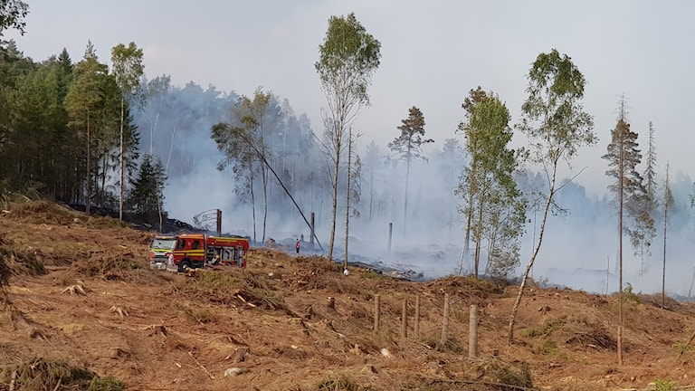 En brandbil står på ett kalhygge med rök i skogen bakom.