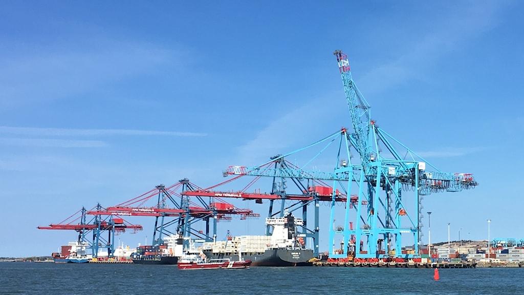 Apm Terminals Göteborgs containerhamn