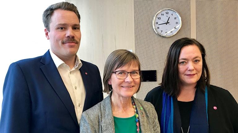 Daniel Bernmar, Karin Pleijel, Stina Svensson.