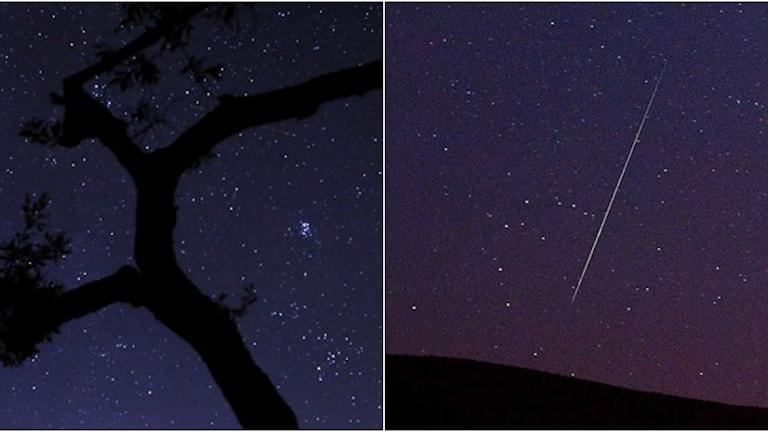 Perseidernas meteorregn ser ut som stjärnfall