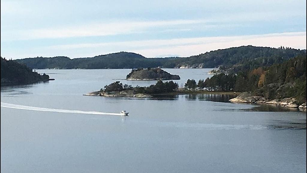 En fjord