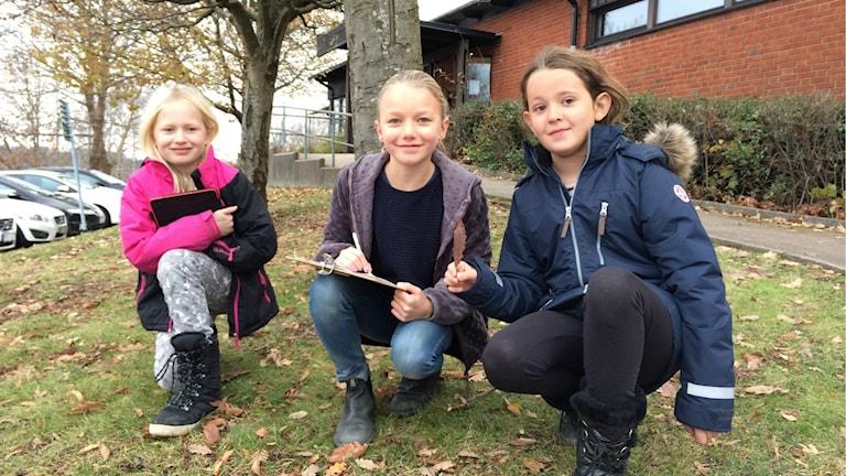 Alva Björklund, Alice Håman och Elin Hillström går i klass 3b på Högadalsskolan.