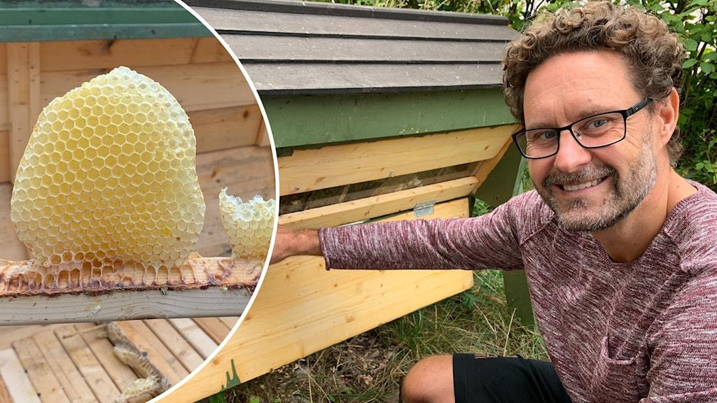 En man sitter framför bikupa och ser glad ut