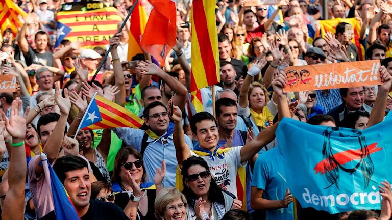 Människor i ett demonstrationståg är glada och håller i gulröda flaggor.