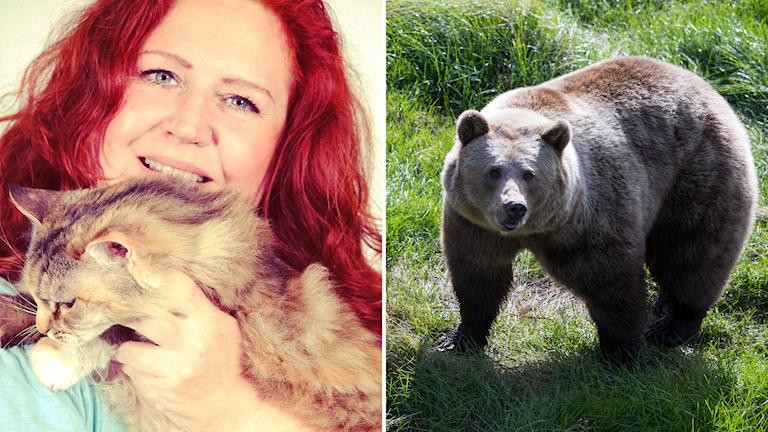 En tjej med en katt och en björn