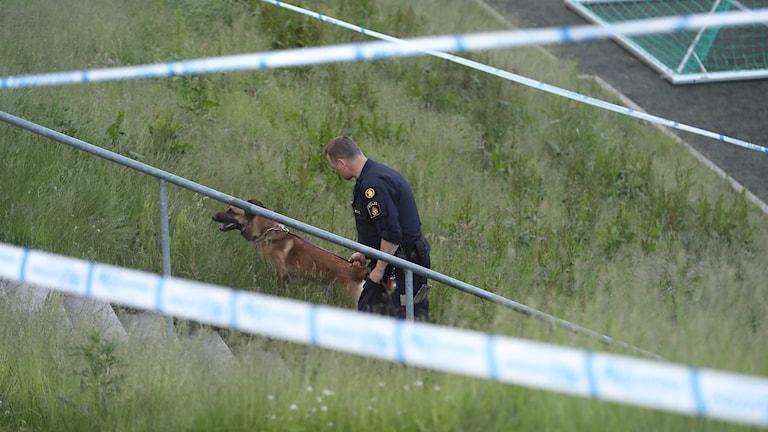 GÖTEBORG En man i 30-årsåldern har skottskadats i Hjällbo i Göteborg. En stor polisstyrka skickades till platsen. Bland annat användes helikopter i sökandet efter de misstänkta.