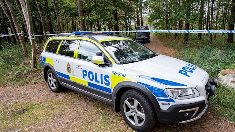 Arkivbil. Polisbil vid skog