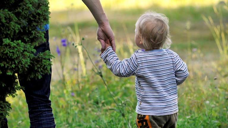 Ett litet barn håller en vuxen i handen.