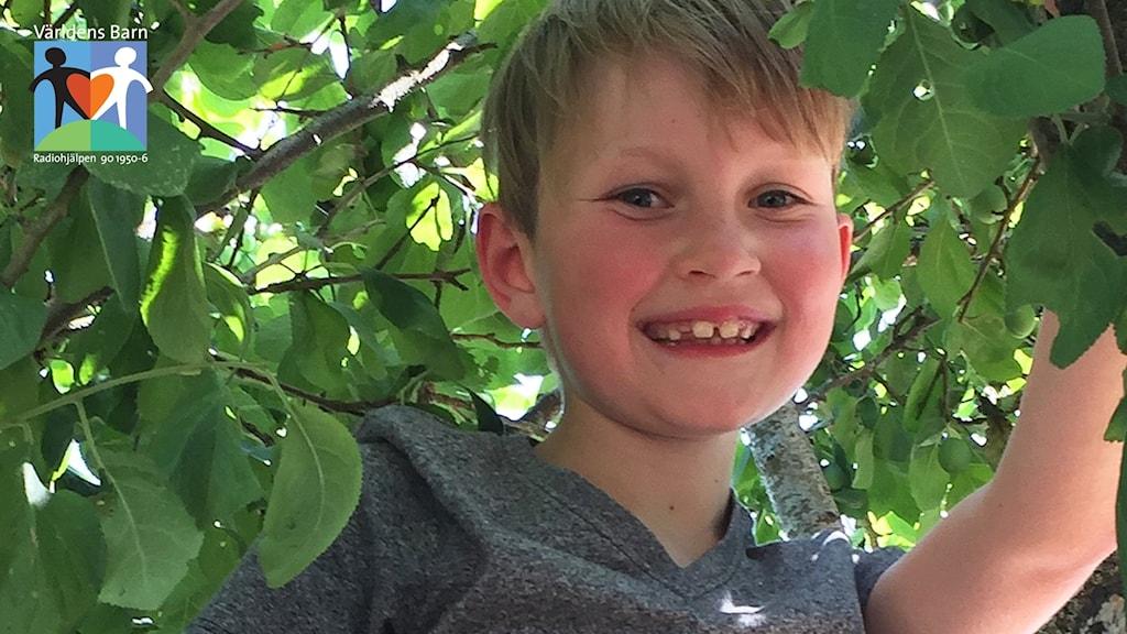 En pojke bland grönskande blad