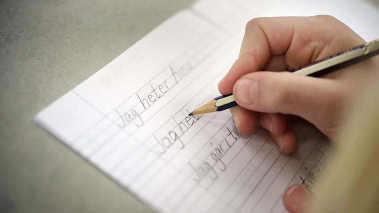 Någon skriver i en skrivbok. Bara handen, pennan och boken syns.
