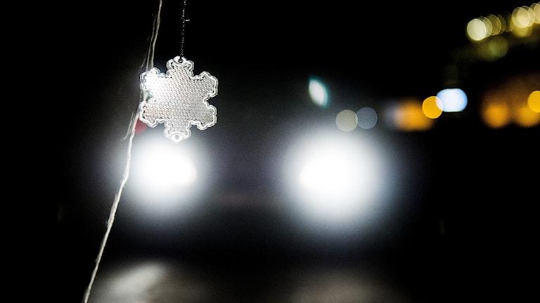 Lyktorna från en bil i mörker lyser upp en reflex.
