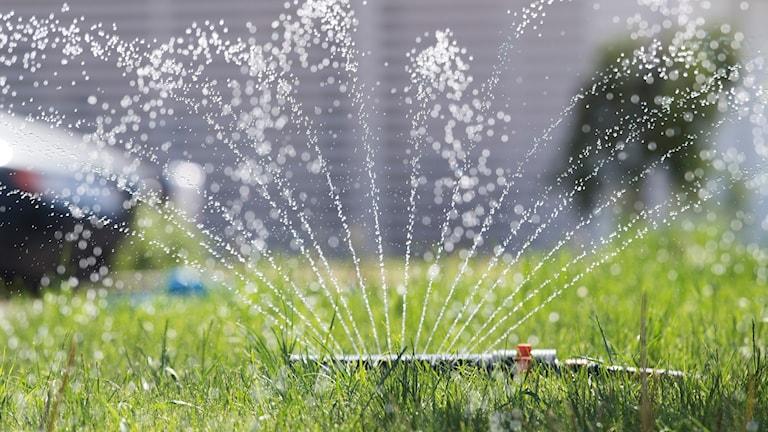 en vattenspridare