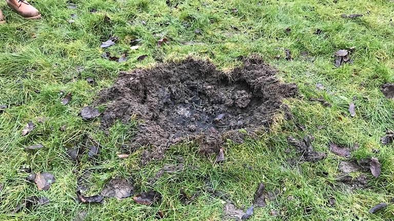 hål i gräsmatta efter handgranat i Kyrkbyn Hisingen