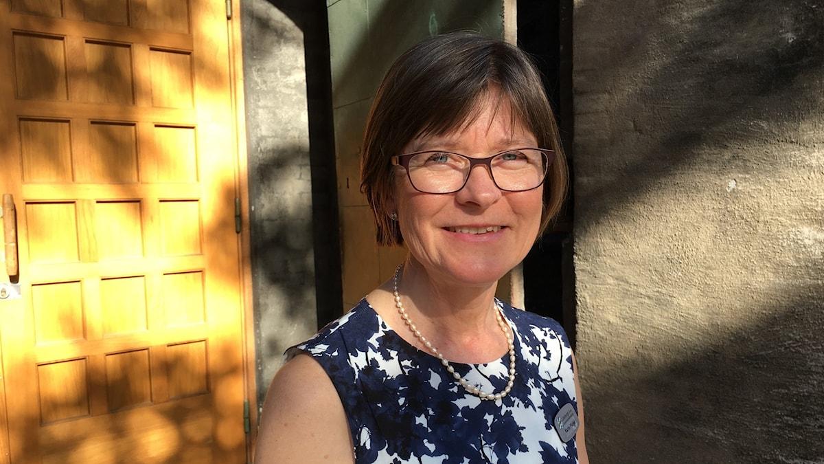 Karin Pleijel mp kommunalråd