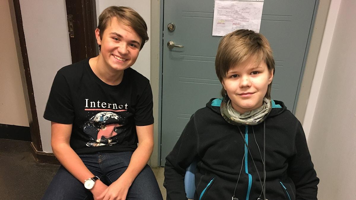 Hannes ja Viljami