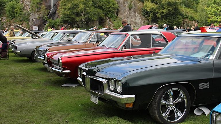 Muskelbilar på rad i rött, svart, grått och brunt.