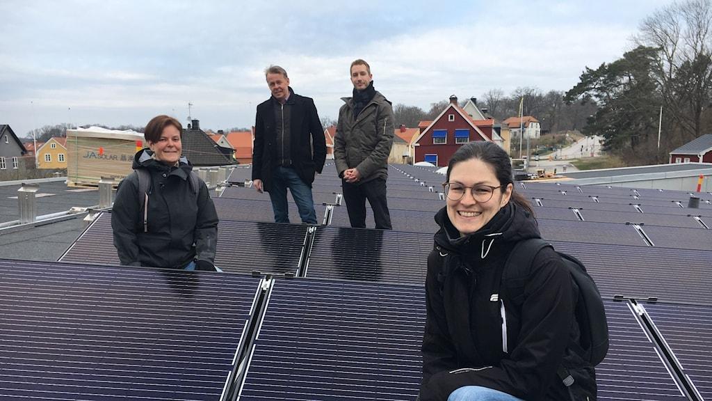 Solpaneler Karlshamn Katrine Svensson, Rickard Holmström, Mats Dahlmbom, Charlott Lorentzen
