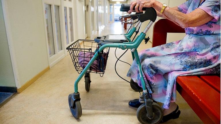 Bild på äldre kvinna som sitter ned med en rullator Foto: Jessica Gow/Scanpix