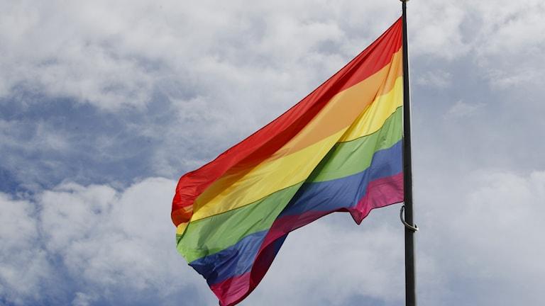 Regnbågsflaggan