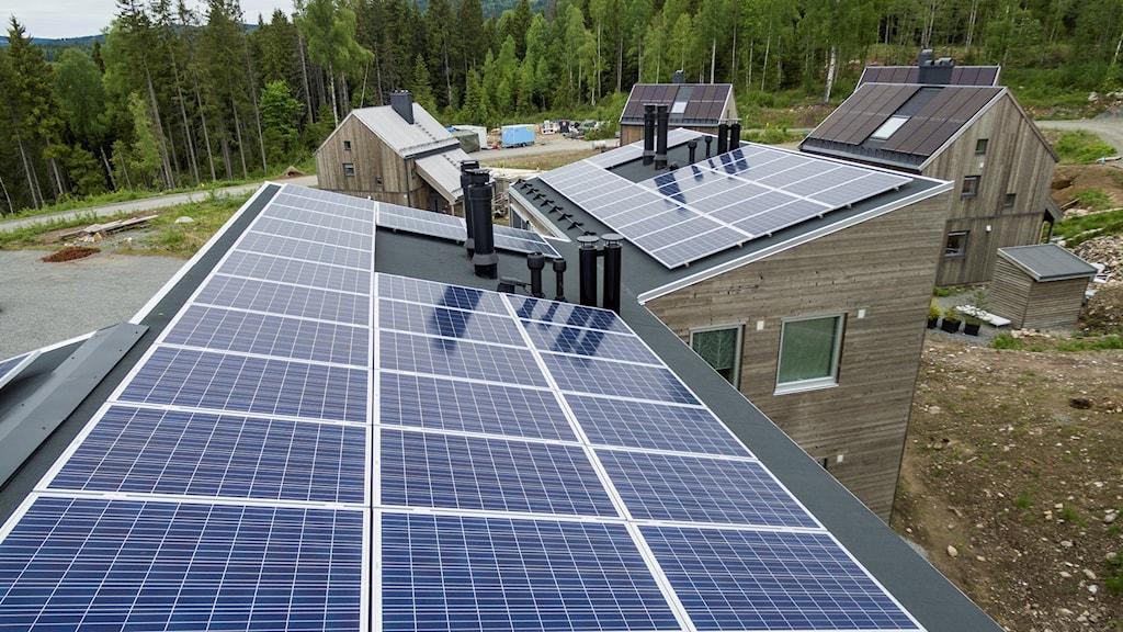 Solpaneler på ett hustak.
