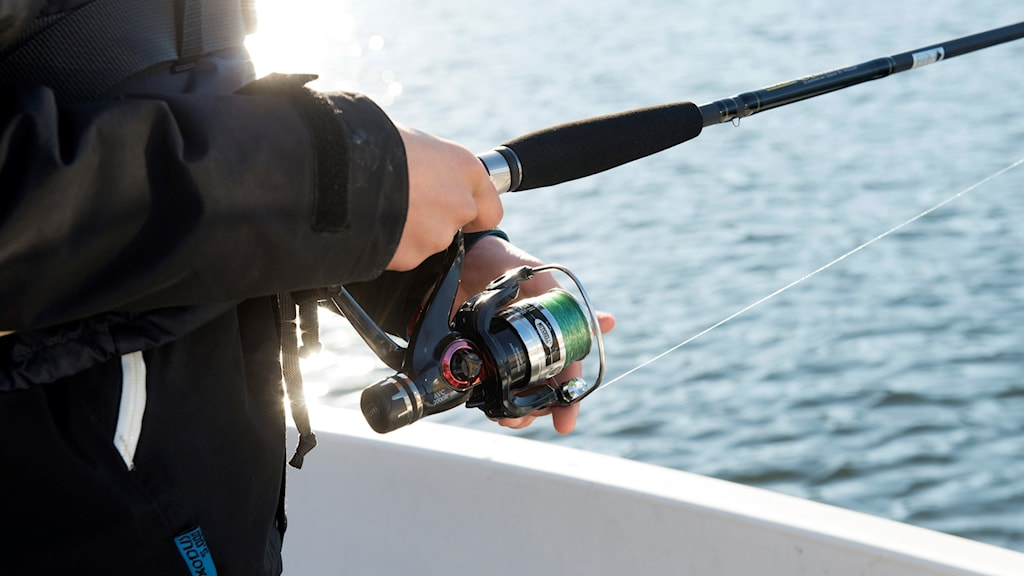 En fiskare som håller i sitt spö med fiskerulle.