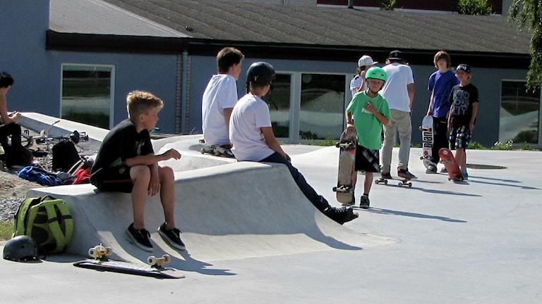Några pojkar på skejtbanan i Karlshamn. Foto: Frank Luthardt/Sveriges Radio.