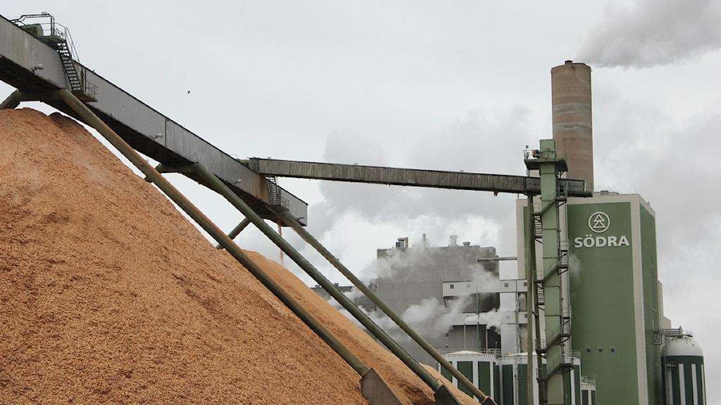 Stora högar med träflis ligger framför fabriken på pappersmassabruket Södra Cell Mörrum. Foto: Frank Luthardt/Sveriges Radio.