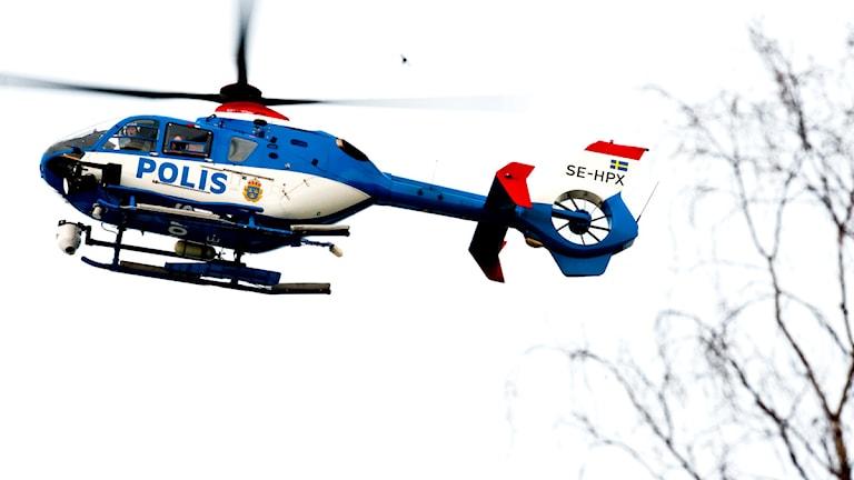 En polishelikopter i luften. Man ser också lite trädgrenar vid sidan. Foto: Pontus Lundahl/Scanpix.