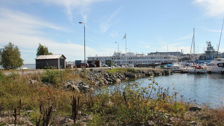 Hattholmen. Studentbåten syns i horisonten och i förgrunden en grusväg och ogräs intill vattnet.