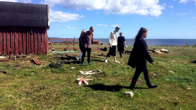 Fem unga konstnärer som går runt i gräset i Gullholma.